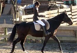 乗馬が趣味な19才のセレブ女子大生を口説き落としてSEX!