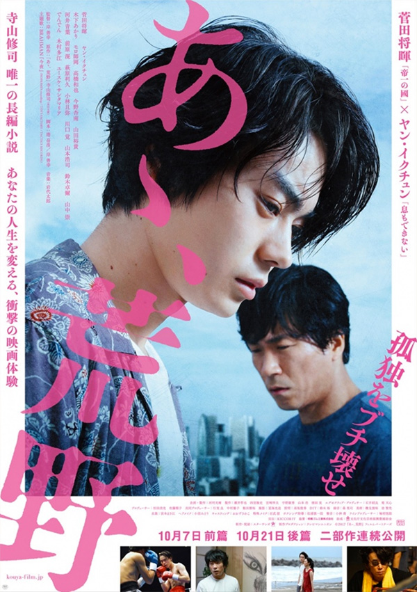 あゝ、荒野 特装版 DVD-BOX(R-18)