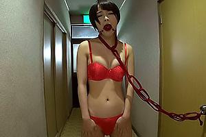 向井藍 縄で縛られ拘束SEXする美乳女子大生、下着姿でリモコンローター入れてお散歩