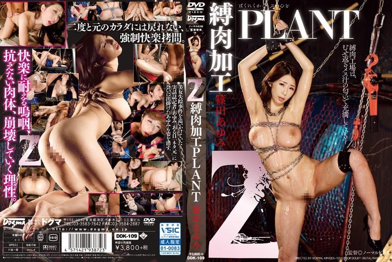 Z 縛肉加工PLANT 篠田あゆみ